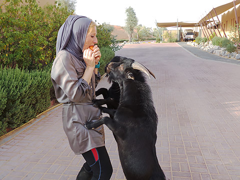 Yasmin mit Ziegenböcken