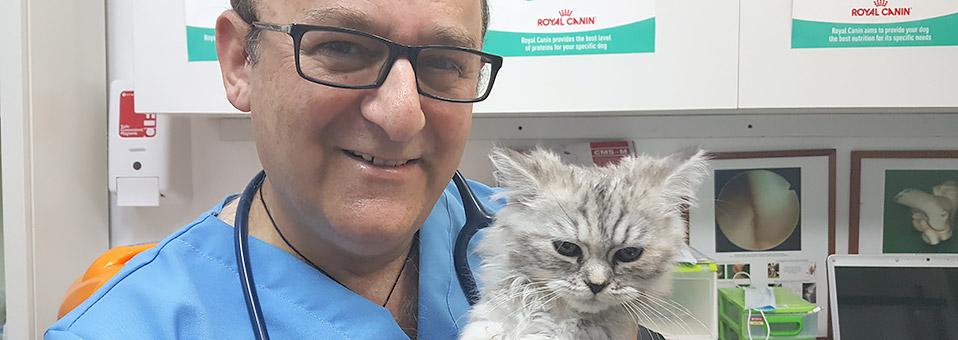 Zahnpflegeangebot für Hund und Katz