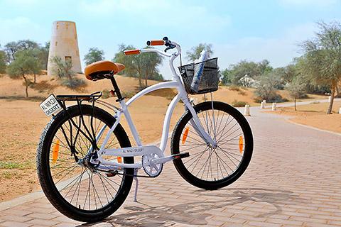 Al Wadi Bikes