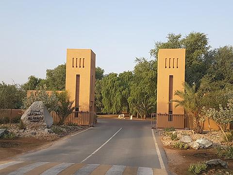Morgen in Al Wadi