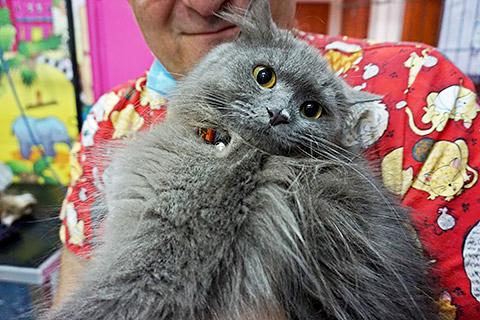 Dr. Omer mit Katze