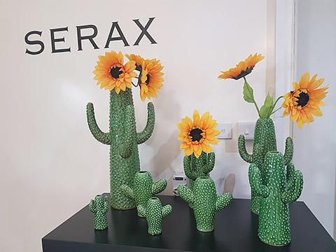 Kaktus-Vasen