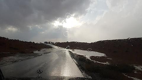 Wüste bei Regen