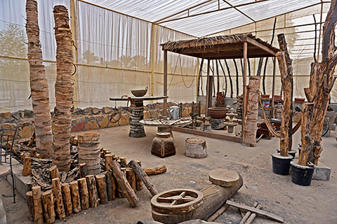 Projekt Kaktusmuseum