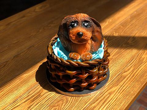 Hunde-Kuchen