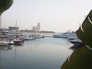 Blick aus der Marina Muse