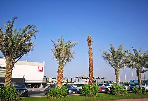 Eingang Al Hamra Golf Club