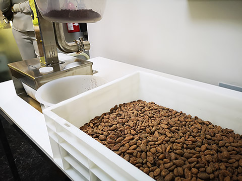 Kakao-Nibs