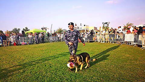 RAK Police Hunde