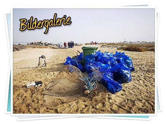 Bildergalerie - Clean the Beach in Ras Al Khaimah
