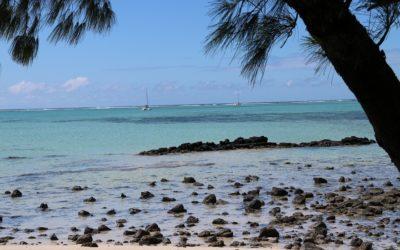 Mauritius – ein Traum im August